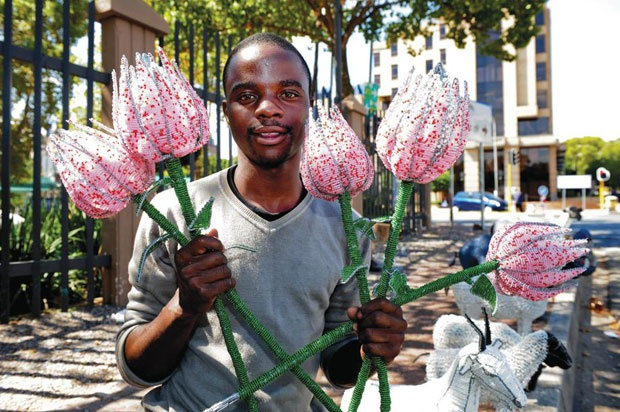 Beaded Proteas