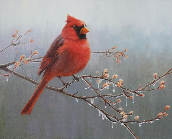 Promise Of Spring Cardinal Oil Painting By Mary Erickson