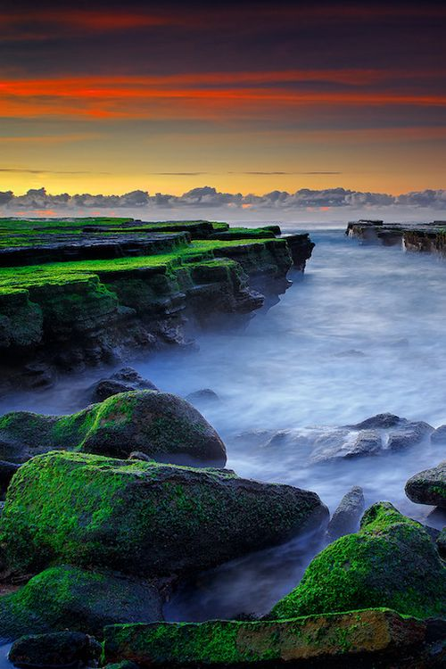 sundxwn:  Magical Mossby Noval Nugraha