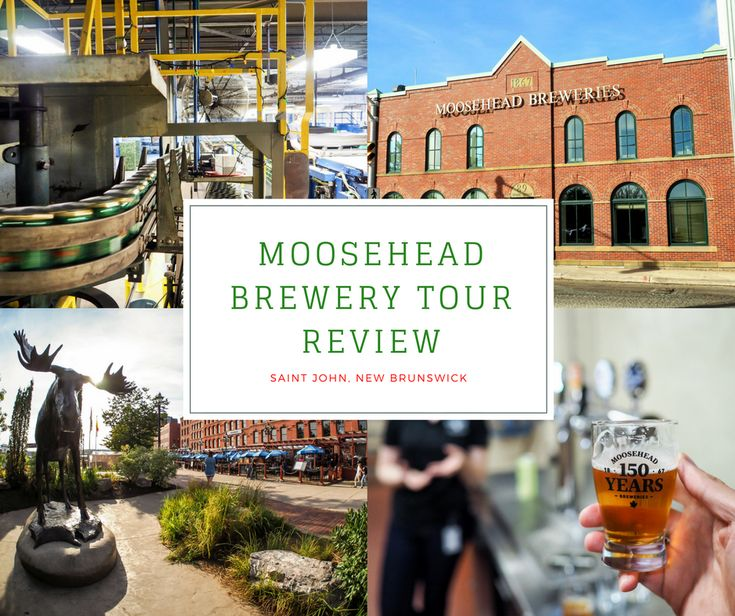 Canada's oldest independent brewery is not without its share of stories. With beer straight from the source on my Moosehead Brewery Tour, I got a taste.