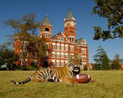 40 Best Auburn University Images On Pinterest Auburn