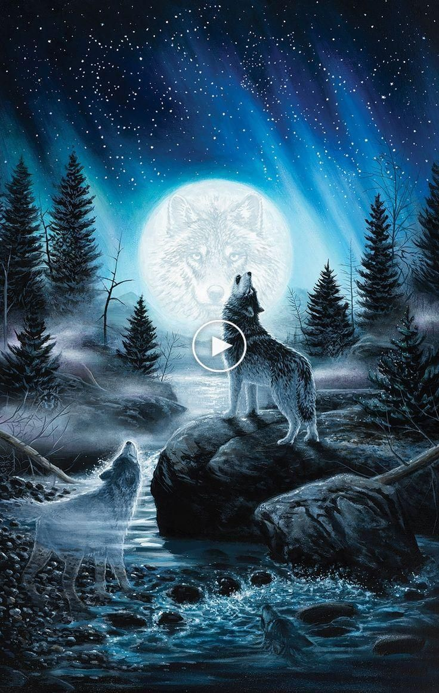 Howling Wolf Wallpaper Iphone Wallpaper Lobos Plano De Fundo Iphone Wallpaper