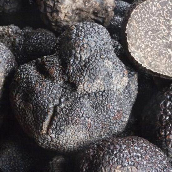 Winter Truffles