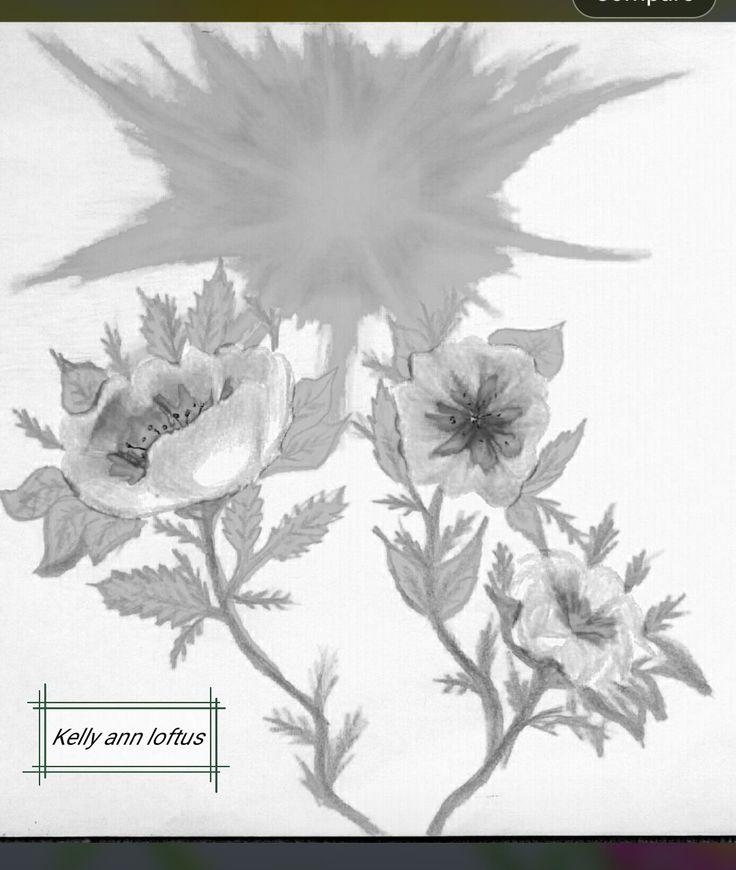 Light contrast filtered flower 3