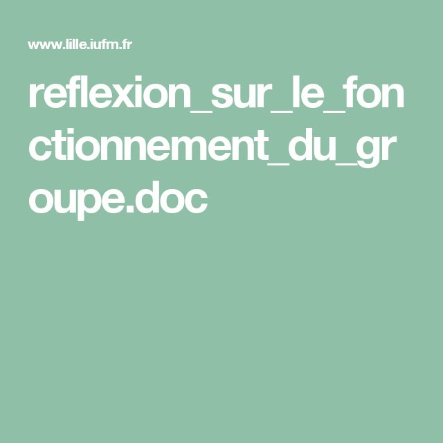 reflexion_sur_le_fonctionnement_du_groupe.doc