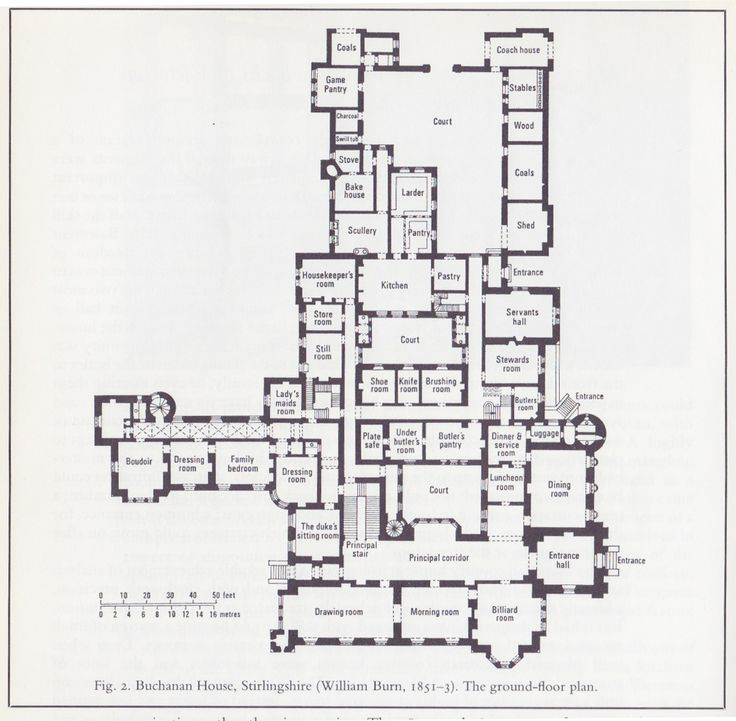 Best 25+ Mansion floor plans ideas on Pinterest | Victorian house ...