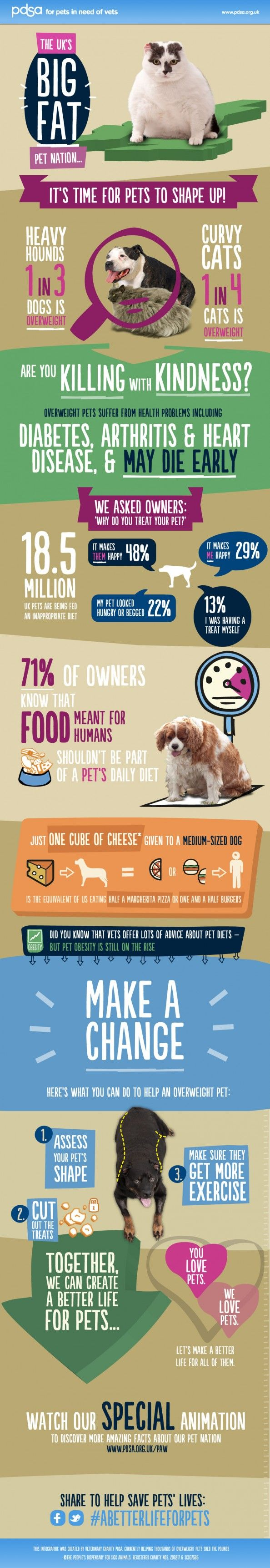 Big Fat Pet Nation: Obese Pets in The UK Facts Infographic #pets #dogs #cats