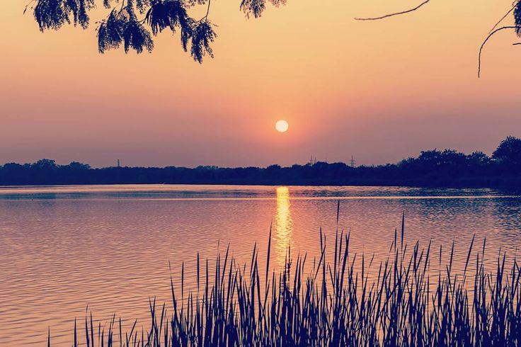 """solitary summer""  #_soi #_oye #storiesofindia #indiagramtravel #india_ig #india_91 #inspiroindia #igramming_india #india_gram #inspired_traveller #passionpassport #ourplanetdaily #lonelyplanetindia #travel_magazine #traveldudes #traveldeeper #thephotosociety #thebest_capture #vsco #canon700d #vscocam #instadaily #picoftheday #instadaily #photooftheday #landscape #silhouette #indiapictures #best_silhouette #silhouette_creative"