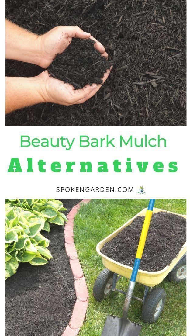 49cb2bb5d24fd3e785e099db0fb1ffda - Best Bark Mulch For Flower Gardens