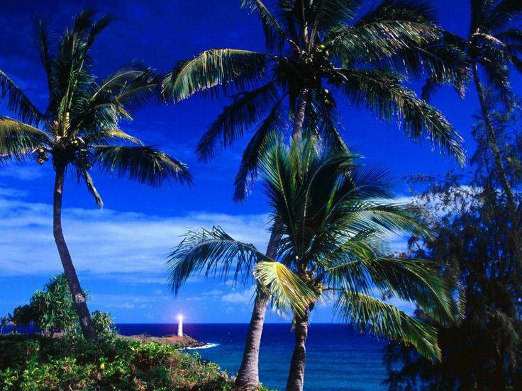 USA - gratis bakgrundsbilder: http://wallpapic.se/stader-och-lander/usa/wallpaper-15186