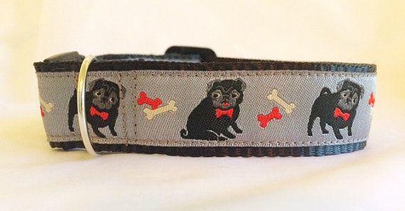 Black Pugs Dog Collar