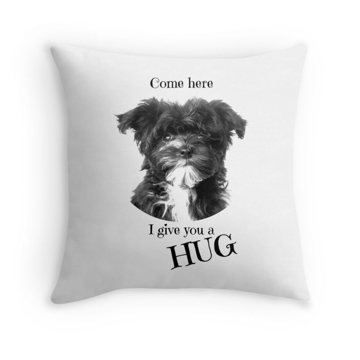 Come here I give you a hug. This little dog on the cushion can be ordered at: https://www.redbubble.com/people/bbrigitte/works/23494568-sweet-droekke?p=throw-pillow&ref=artist_shop_grid