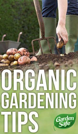 tips för organisk odling