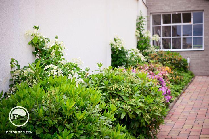 Nádherná rozkvitnutá záhrada