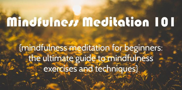 Mindfulness Meditation for Beginners: The Ultimate Guide (EXERCISES & TECHNIQUES)