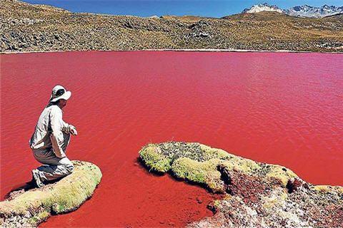 Laguna Roja, Camiña- Región de Tarapacá, Chile Red lake, northern Chile