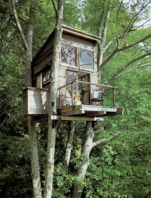 """Cute and peaceful treehouse that looks like it was perhaps built from salvage materials...but not sure how you get into it...don't see a ladder!  Is that little jutting structure an """"elevator"""", LOL?  Naaaaaah"""