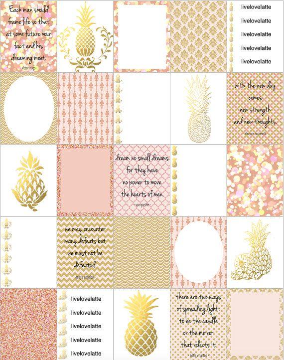 Pink Champagne Pineapple Erin Condren Vertical by LiveLoveLatte