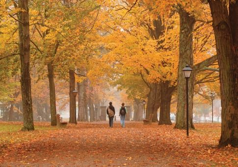 Kenyon College The World's Most Beautiful College Campuses 2010 - Forbes.com