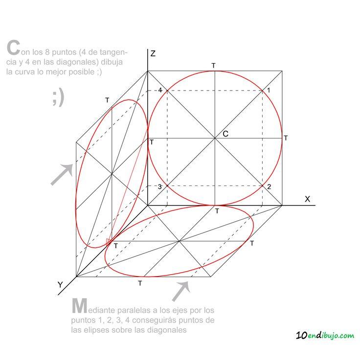 11 Perspectiva Caballera circunferencia