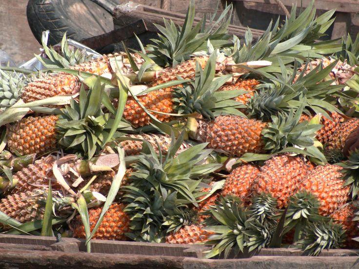 mekongdelta ananas