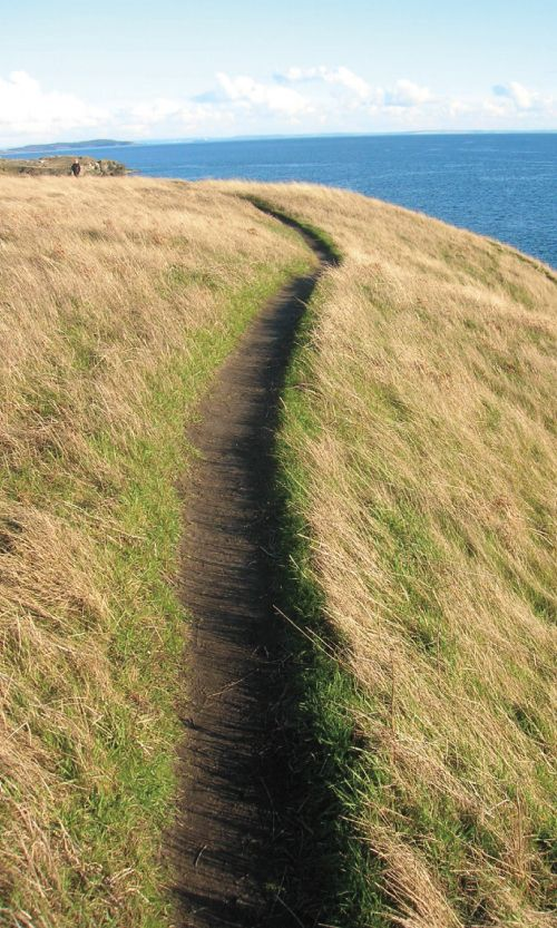 Catch sweeping maritime views from atop Mount Finlayson on San Juan Island, WA, an easy 3.5 miles.