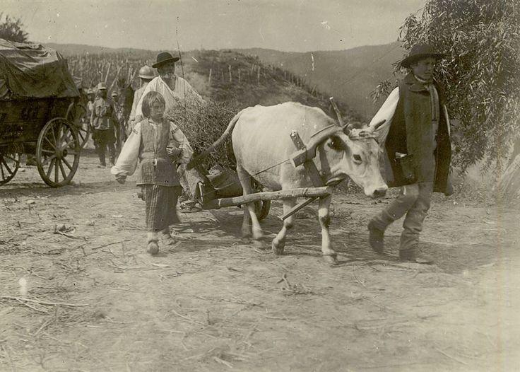 {El mundo de ayer} Escena de la vida rural en los años de guerra mundial