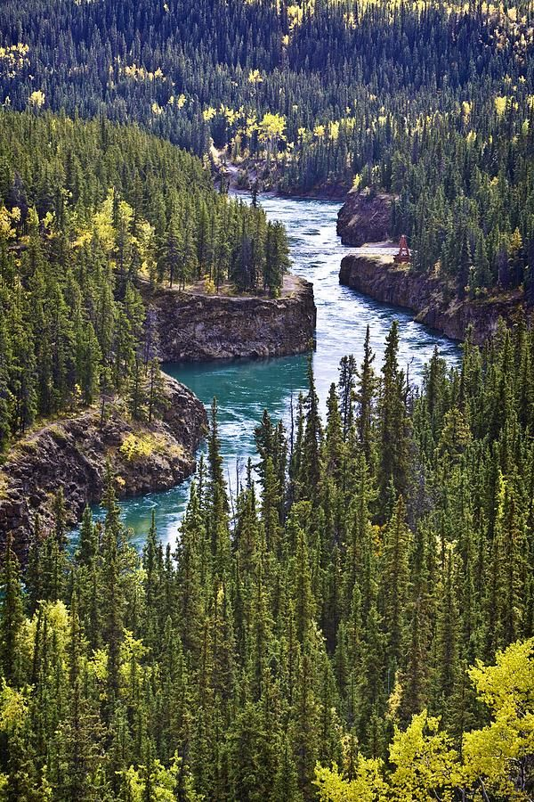 Yukon Territory, Canada. It doesn't even look real, that's how awesome it is.