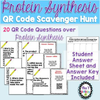 Need a fun activity to assess your students' understanding of PROTEIN SYNTHESIS? Look no further! This QR code scavenger hunt is sure to not only be fun but also help reinforce important concepts relating to Protein Synthesis. Concepts covered in the review activity are: -Location of Transcription and Translation -RNA Polymerase -Transcribing mRNA from a DNA template -Translating mRNA into the correct amino acid sequence ...and more!