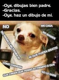 Resultado de imagen para memes del perrito chihuahua