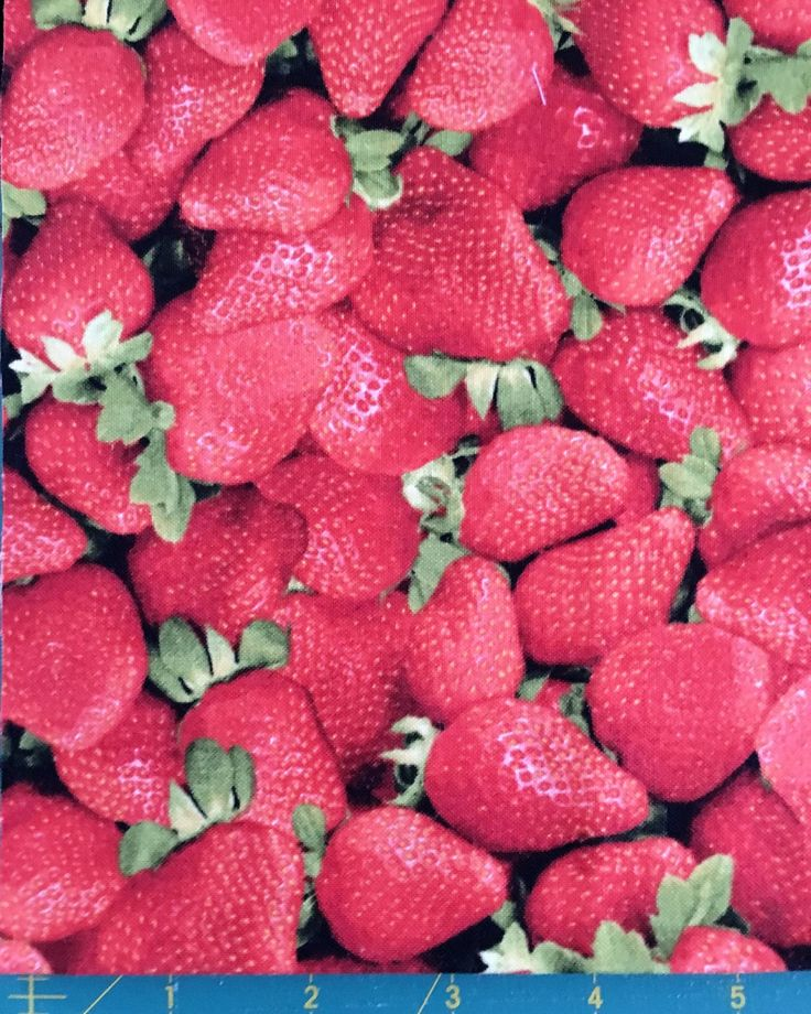 """Strawberries Novelty Fabric 9""""X18"""" 100% Cotton by ISPYCharms on Etsy"""
