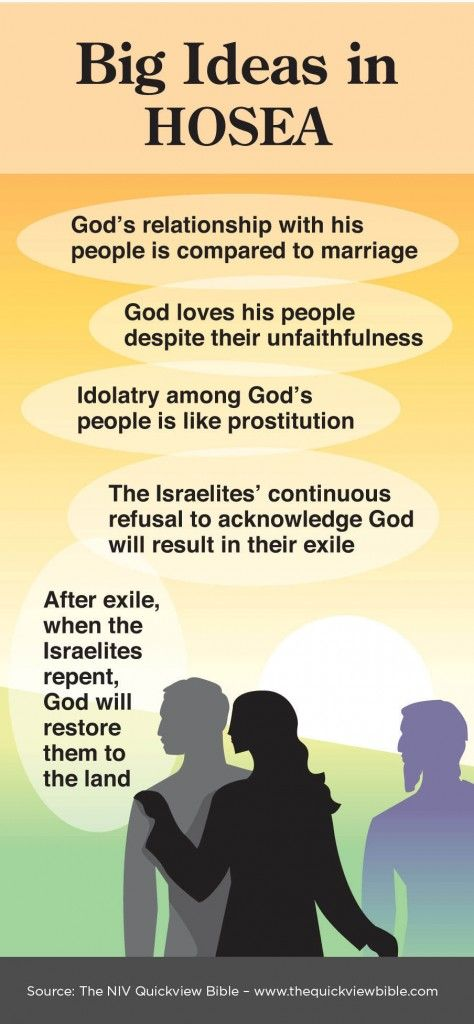 Overview of Hosea Infographic - Illustration