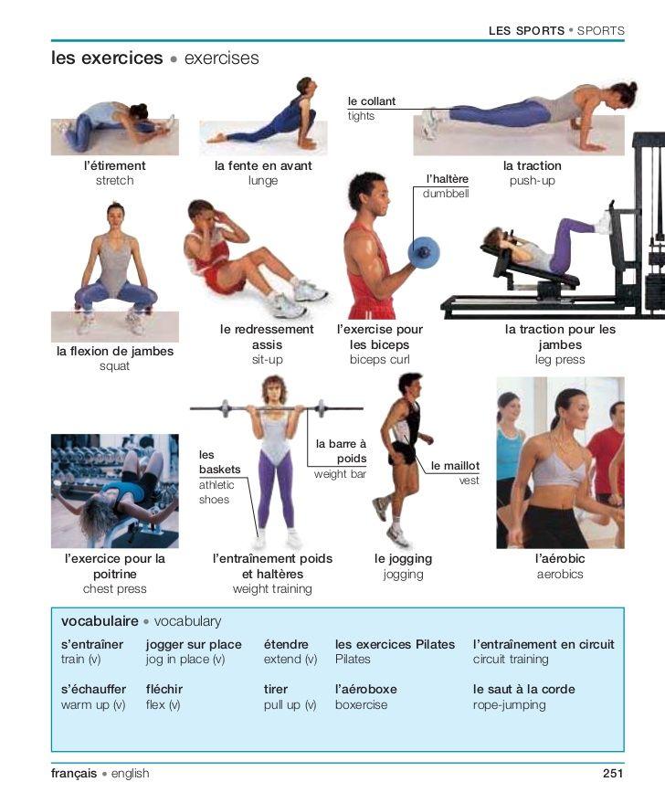 Le conditionnement physique: Les exercices