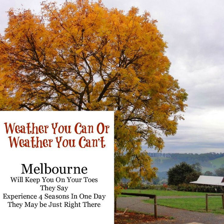 Cover Pin for the Melbourne Weather board