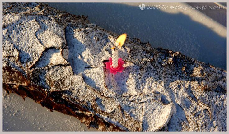 www.slodko-slony.blogspot.com - rolada czekoladowa gałąź / chocolate roll