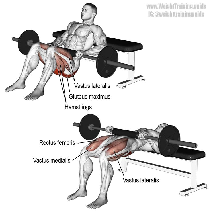 Barbell hip thrust. An isolation exercise and arguably the king of all glute exercises! Visit site to learn proper form. Target muscle: Gluteus Maximus. Synergistic muscles: Quadriceps (Vastus Lateralis, Vastus Medialis, Vastus Intermedius, and Rectus Femoris). Dynamic stabilizers: Hamstrings.
