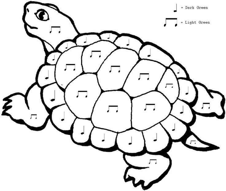 """(Original Pinner) Couldn't find a color by musical note coloring page, so I made my own! I took a regular tortoise coloring page and added musical notes and a key in Windows Paint. This will accompany a first grade listening assignment of Saint-Saens Carnival of the Animals: Tortoise"""