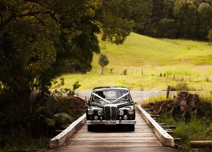 wedding car - Daimler, by Tic Tac Tours, Gold Coast.  photo taken at Currumbin Valley