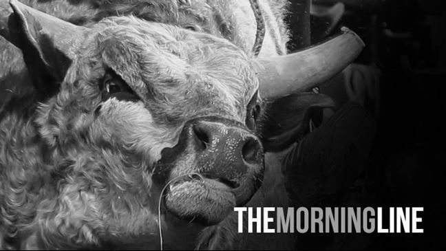 The Morning Line: Ty Murray Invitational, Day 2
