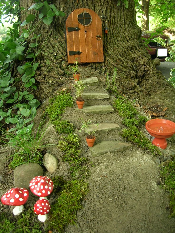 steps miniature door in a tree trunk for a fairy garden