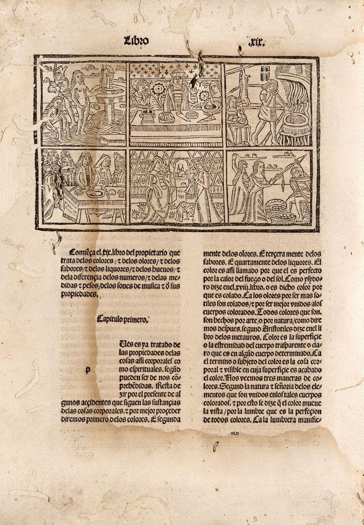 A.1 S.XV Autor: BARTHOLOMAEUS ANGLICUS. Título: De propietatibus rerum (en castellano) / trad. por Fray Vicente de Burgos] Editorial: Imprimido en la noble ciudad de Tholosa : por Henrique Meyer ... , 18 de septiembre de 1494. http://absysnetweb.bbtk.ull.es/cgi-bin/abnetopac01?TITN=223192