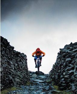 Trek Bikes - The world's best bikes and cycling gear