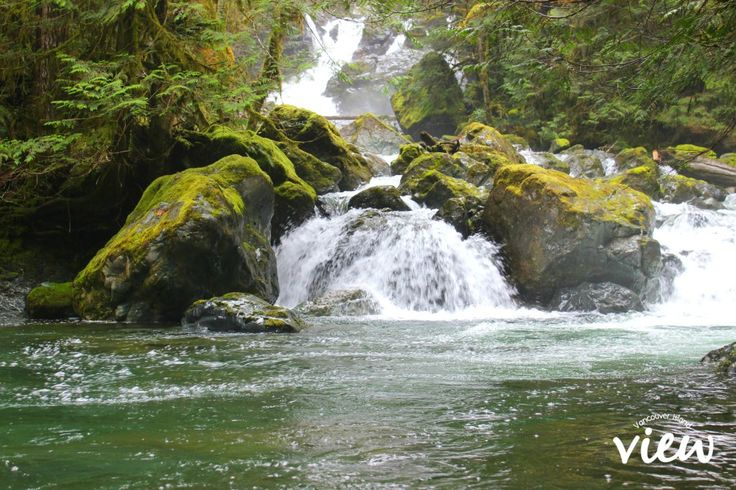 Rosewall Creek Falls is one of the many accessible (and truly magnificent) waterfalls found on Vancouver Island. Discover all about these beauties here!