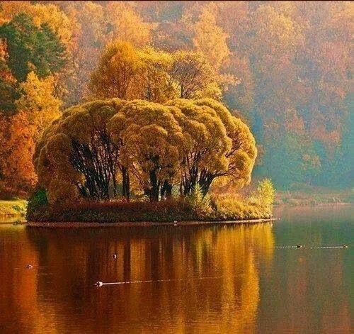 Beautiful Autumn & Fall