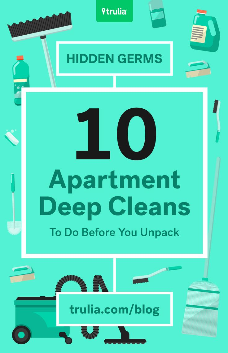 10 things to clean in your new apartment before you unpack: 1. Dust  everything