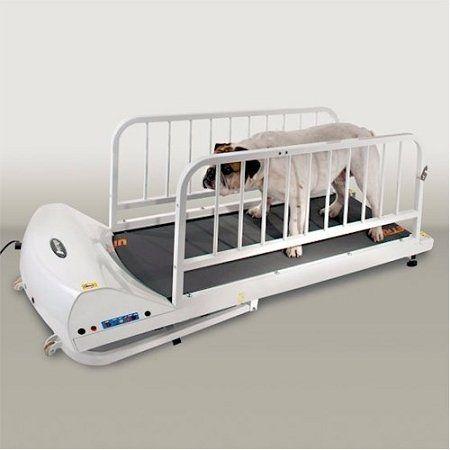 PetRun Dog Treadmill by GoPet – $617