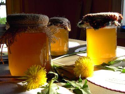 Con i fiori di tarassaco è possibile preparare uno sciroppo, tradizionalmente indicato per la tosse, il raffreddore, il mal di gola e la bronchite. Questo
