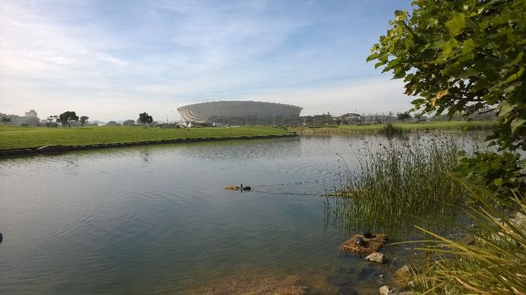 Cape Town's soccer stadium as seen from within the Green Point Urban Park