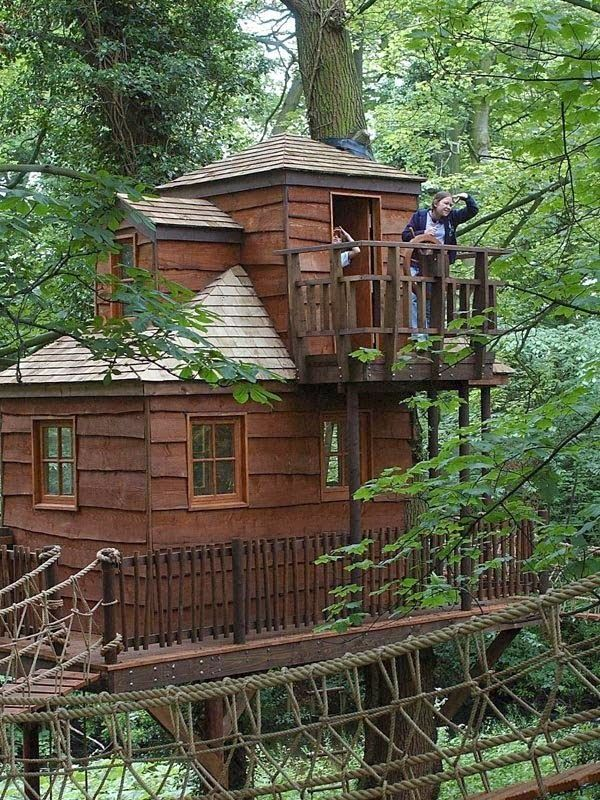 1000 Images About Tree Houses On Pinterest