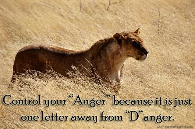 Control your Anger...